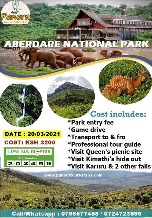 aberdare national park day trip